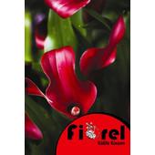 Κάλλα Κόκκινη 14/ Fiorel Ολλανδίας σε Φάκελο