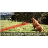 Αόρατο ηλεκτρονικό σύστημα περίφραξης σκύλου - Petrainer W-227