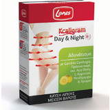 Lanes Kcaligram Day & Night 60s