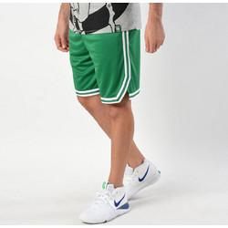 Nike Boston Celtics Icon Edition Swingman NBA Shorts AJ5587-312 5da40494c95