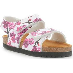 παιδικα παπουτσια - Πέδιλα Κοριτσιών Kickers (Σελίδα 2)  0f399a9f86e