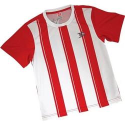 c4d8f2fd56e Στολή Ποδοσφαίρου Παικταράς Κόκκινη - One Size