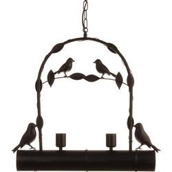 προσφορά μαύρο πουλί